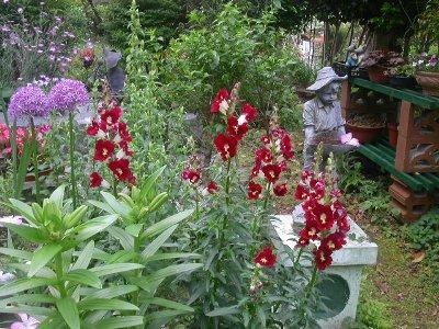 070509mgflowers009h