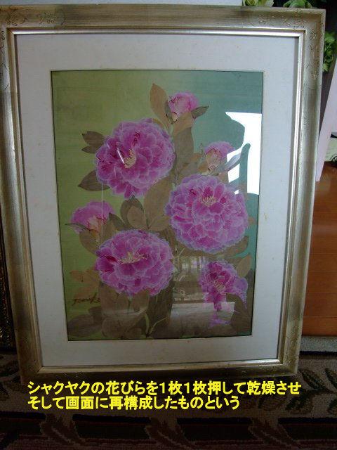 090616endouoshibana001