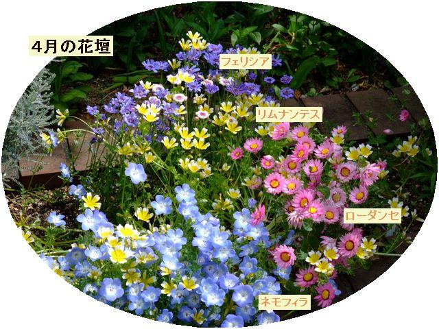 090420mgflowers002saprilgarden