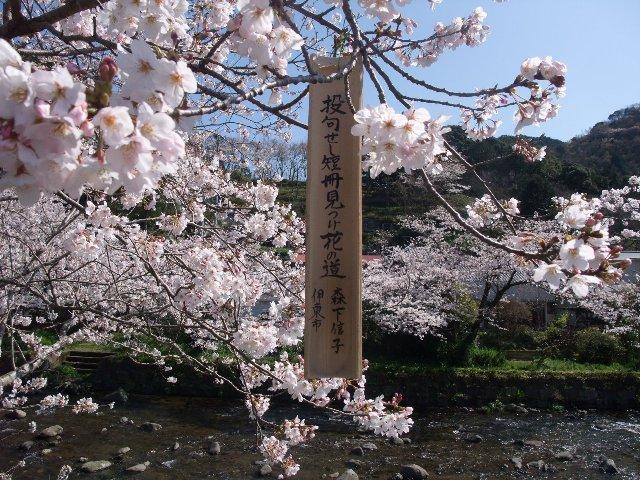 100330matsuzakioosawaonsen013h