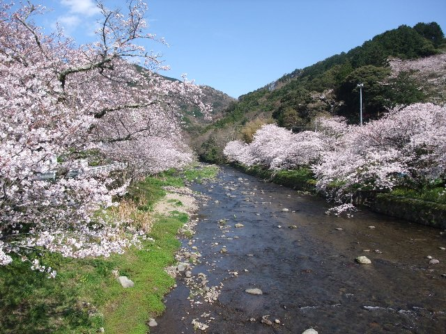 100330matsuzakioosawaonsen016h