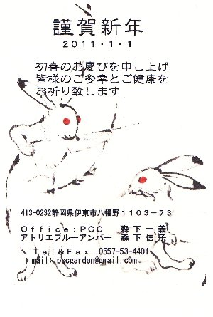 20110101newyearcardrabbit