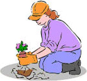 Bannerplantingwoman