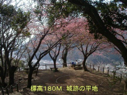 050215KawaduSiroyama-hilltop