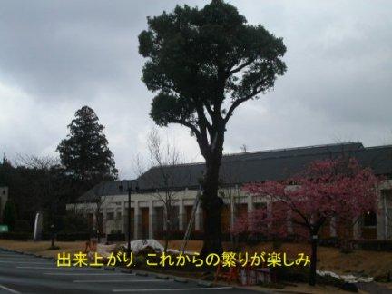 050224-Kusunoki-finish
