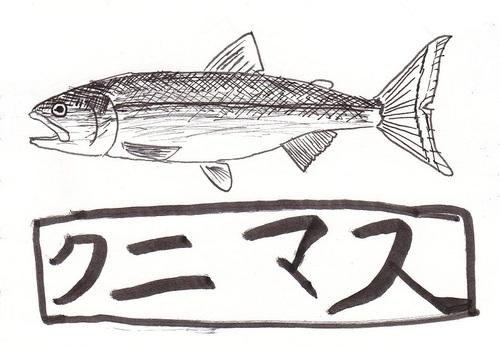 101231akitokunimasu3
