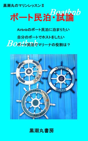Surficewheel31