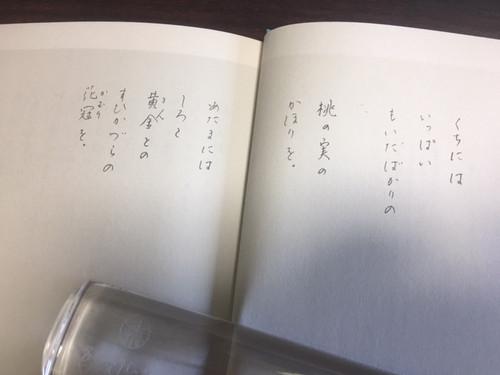 180429sugaatsuko3